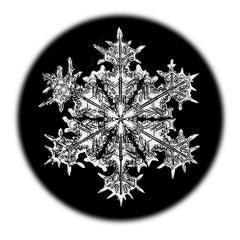 Snowflake Microscopy 1