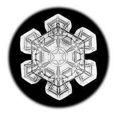 Snowflake Microscopy 2