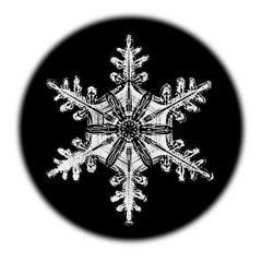 Snowflake Microscopy 3