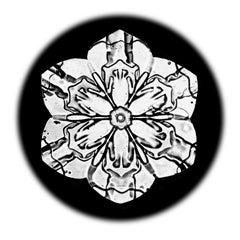 Snowflake Microscopy 4