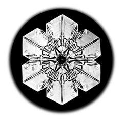 Snowflake Microscopy 5