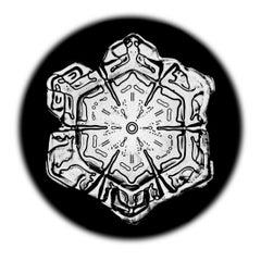 Snowflake Microscopy 6