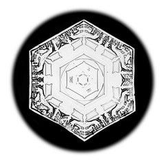 Snowflake Microscopy 7