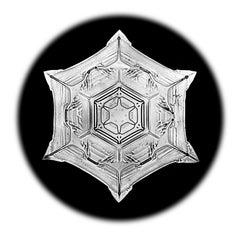 Snowflake Microscopy 8