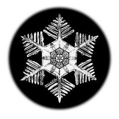 Snowflake Microscopy 9