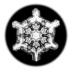 Snowflake Microscopy 11