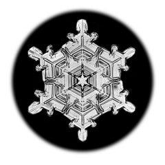 Snowflake Microscopy 13