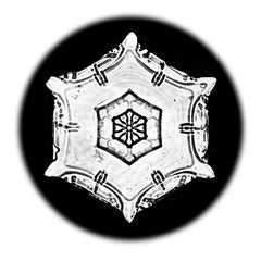 Snowflake Microscopy 16
