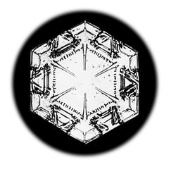 Snowflake Microscopy 17