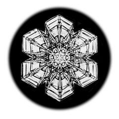 Snowflake Microscopy 18