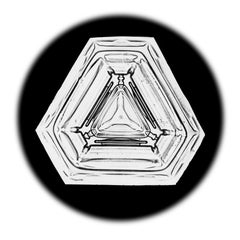 Snowflake Microscopy 19