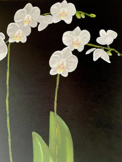 White Petals Standing on Tall Stems over Green Leaves. Title - Orchids