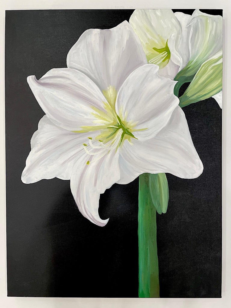 Amaryllis, Occasionally Referred to as
