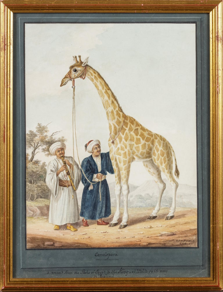 Charles Frederick de Brocktorff Animal Painting - The King's Camelopard