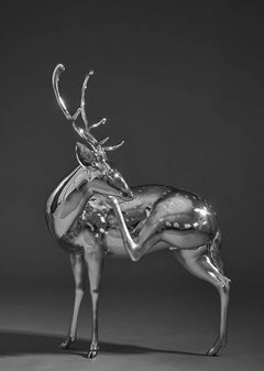 Stainless Steel Still-life Sculptures