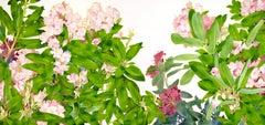 OT - Bukovnik - Rhododendron