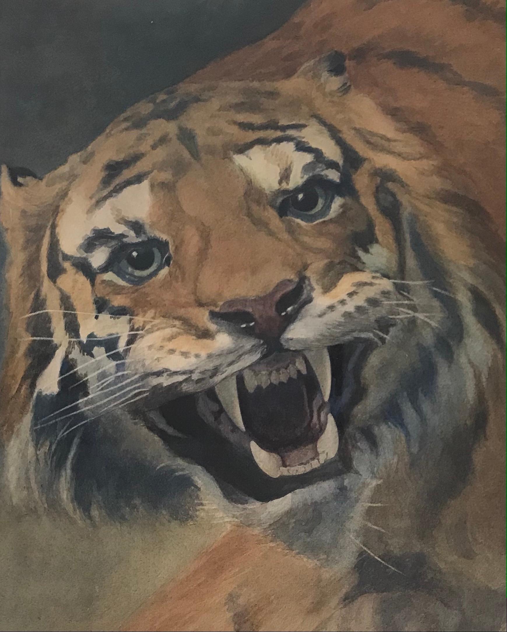 James Exley, Roaring Tiger watercolour