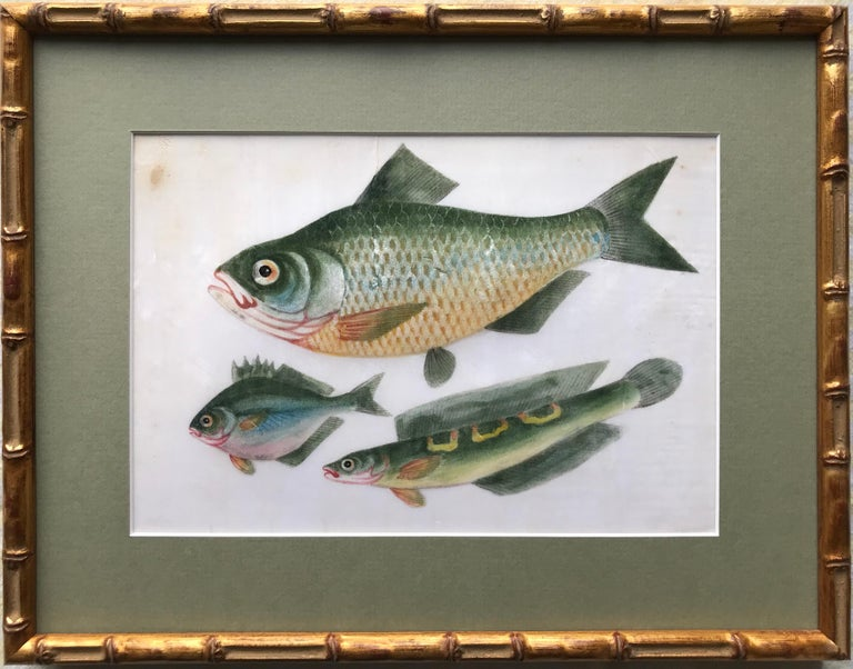 A pair of 19th Century Chinese Export Rice Pith Paper watercolors of fish - Art by 19th Century Chinese school