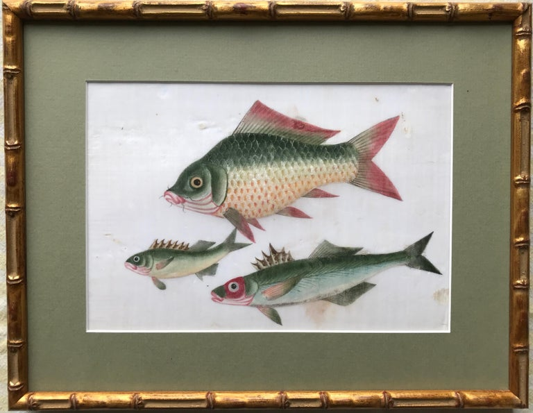 A charming pair of 19th century watercolors on pith (rice) paper of exotic fish. With lovely colour and detailing.  Each image measures approximately 6.5 x 9.5 inches and are attractively presented with gilded Bamboo style frames.  This type of
