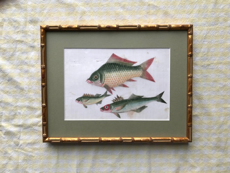 A pair of 19th Century Chinese Export Rice Pith Paper watercolors of fish For Sale 2