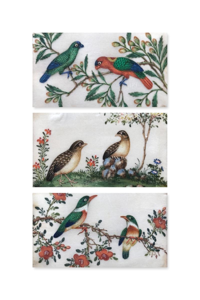 Three 19th Century Chinese Export Rice Pith Paper watercolors of birds