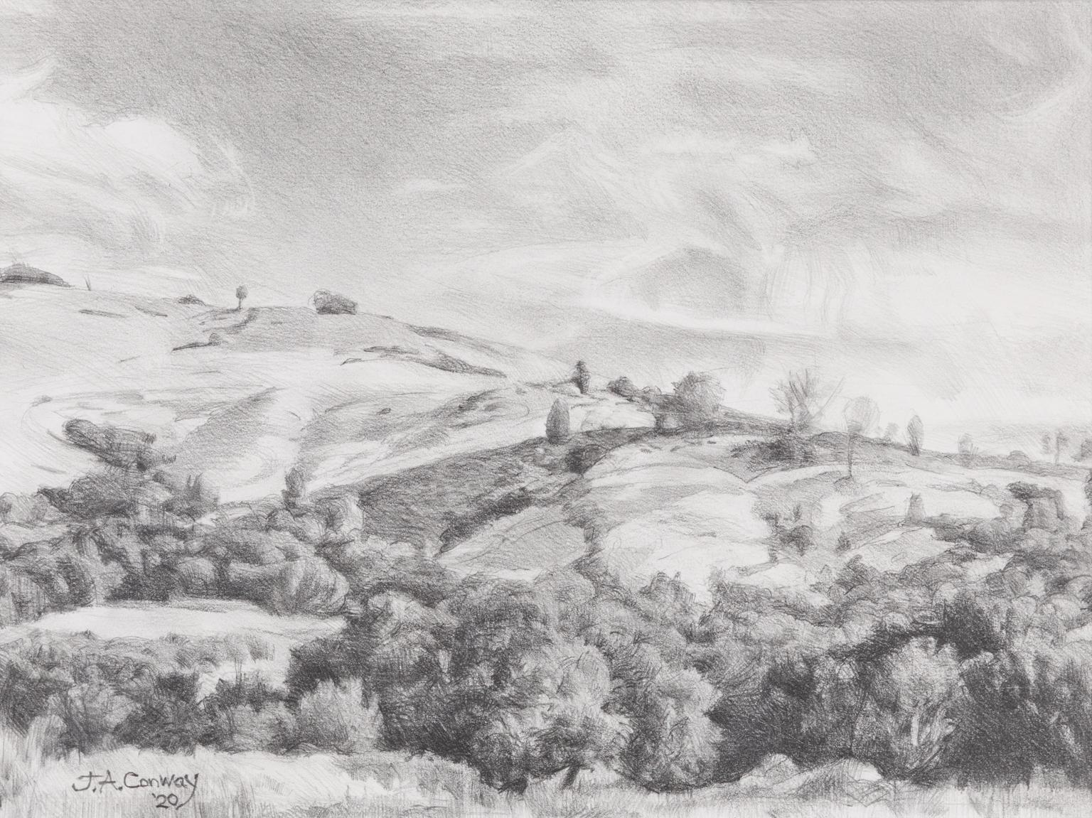 The Hills of Coyote Creek - Landscape Graphite Drawing Contemporary