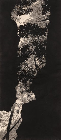 Canopy River - Linocut Print in Black and White of Forest Through Rocky Crevice