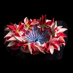 Pink and Red Flower Anemone 2 - inspired from flowers and plants, red, white