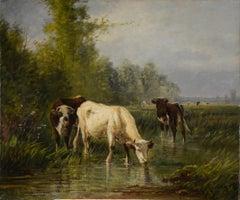 """Cattle Watering"""