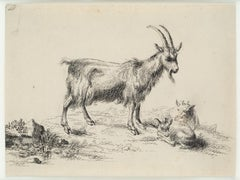 A Goat with her babies, 17th Century, Old Master Drawing, After Berchem, Animals