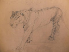 Old Master Drawing Tiger German or French Art, Animal Drawing