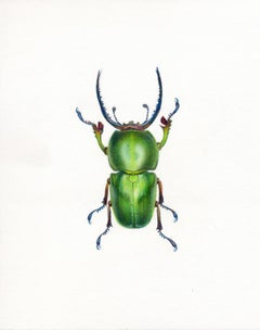 'Green Beetle #1' - insect illustration - hyperrealism - Chuck Close