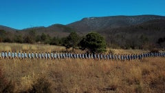 """""""Walking Line in the Valley in Crimora"""" - Landscape Photography - Goldsworthy"""