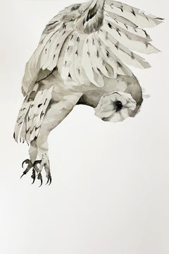 """Lift"" - Large Scale Contemporary Gestural Animal Drawings - Barn Owl - Dürer"