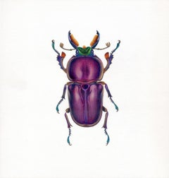 'Purple Beetle #2' - insect illustration - hyperrealism - Chuck Close