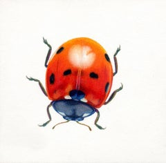 'Red Beetle #7' - insect illustration - hyperrealism - Chuck Close