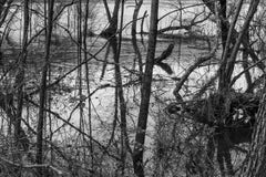 'Rising Water' - Black and White - Landscape Photography - Eliot Porter