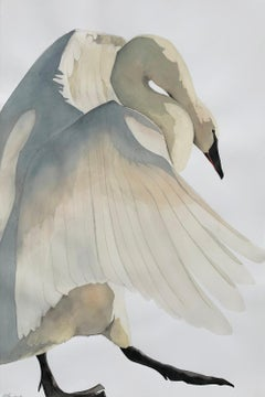 """Cadence"" - Swan Portrait - Large Scale Animal Drawing - Audubon - Durer"