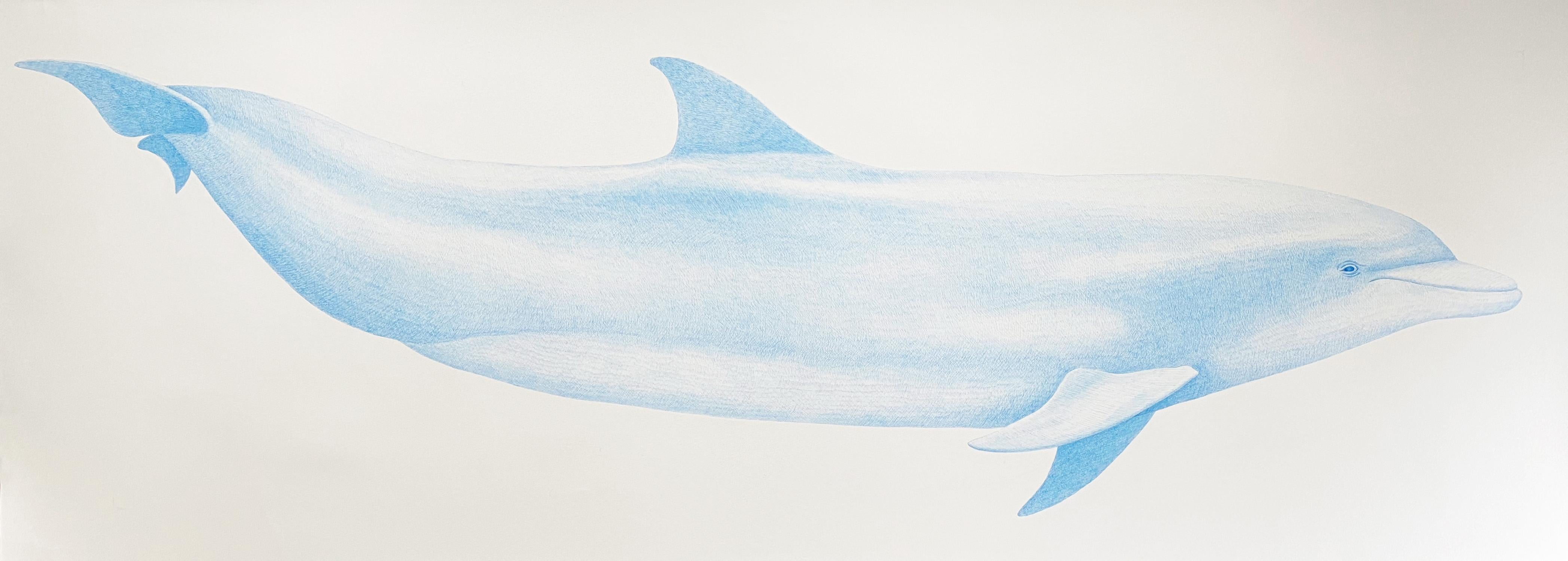 'Bottlenose Dolphin' - large-scale animal drawing - Chuck Close - Rembrandt