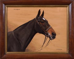 Sporting oil painting portrait of a horse