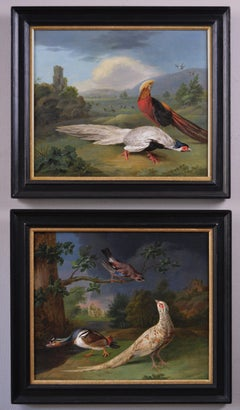 Pair of 18th century oil paintings of exotic & European birds set in landscapes
