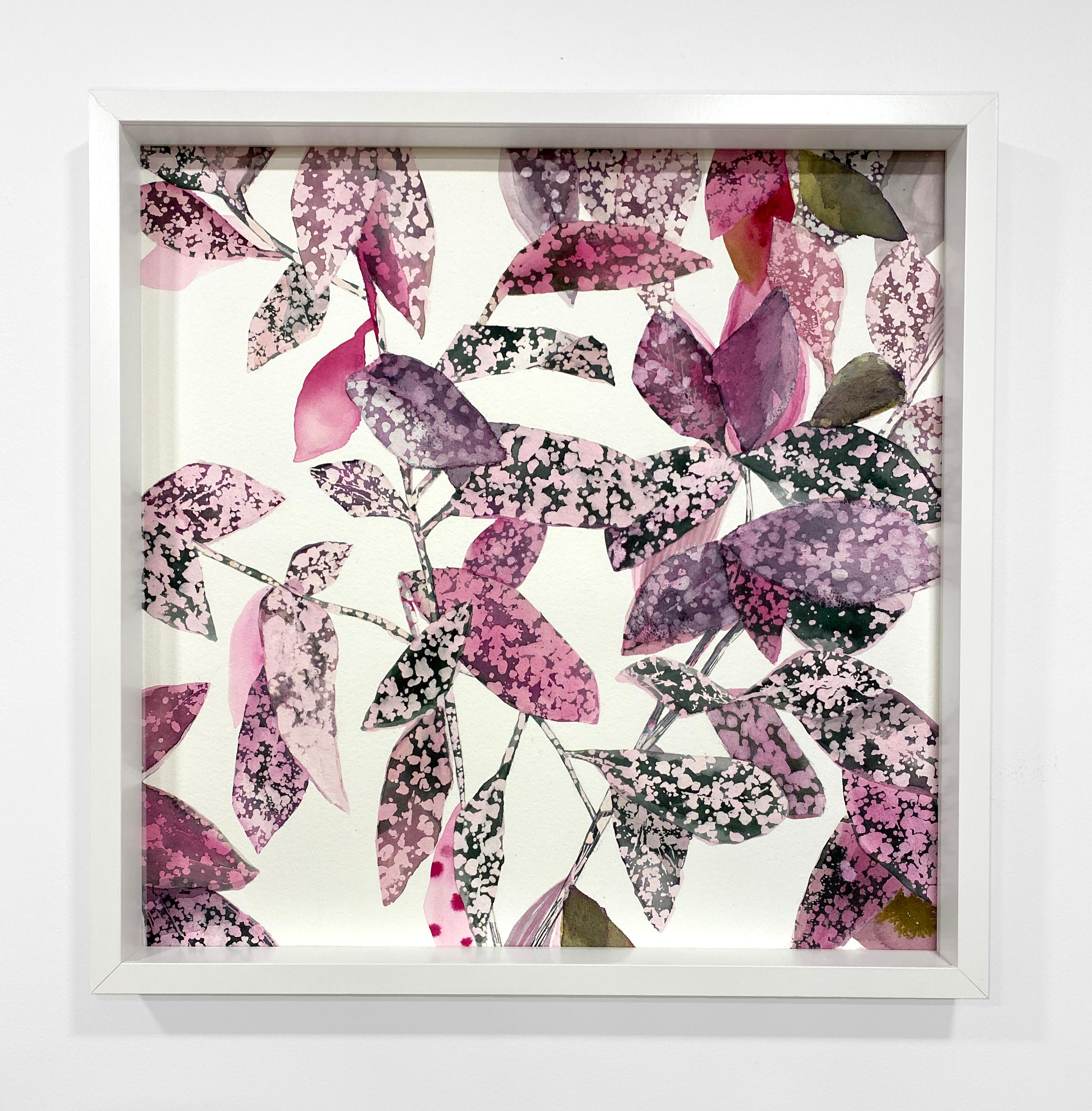 Framed Square Botanical Watercolor by Rachel Kohn - Pink Splash Plant
