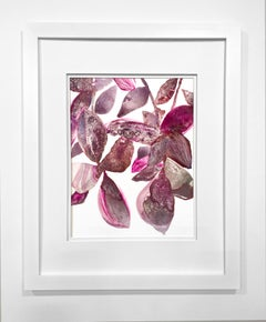 Framed Botanical Watercolor by Rachel Kohn - Plant Puddle #1