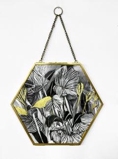 Hexagon Plantlife Drawing by Rachel Kohn - Botanical Shadows #4