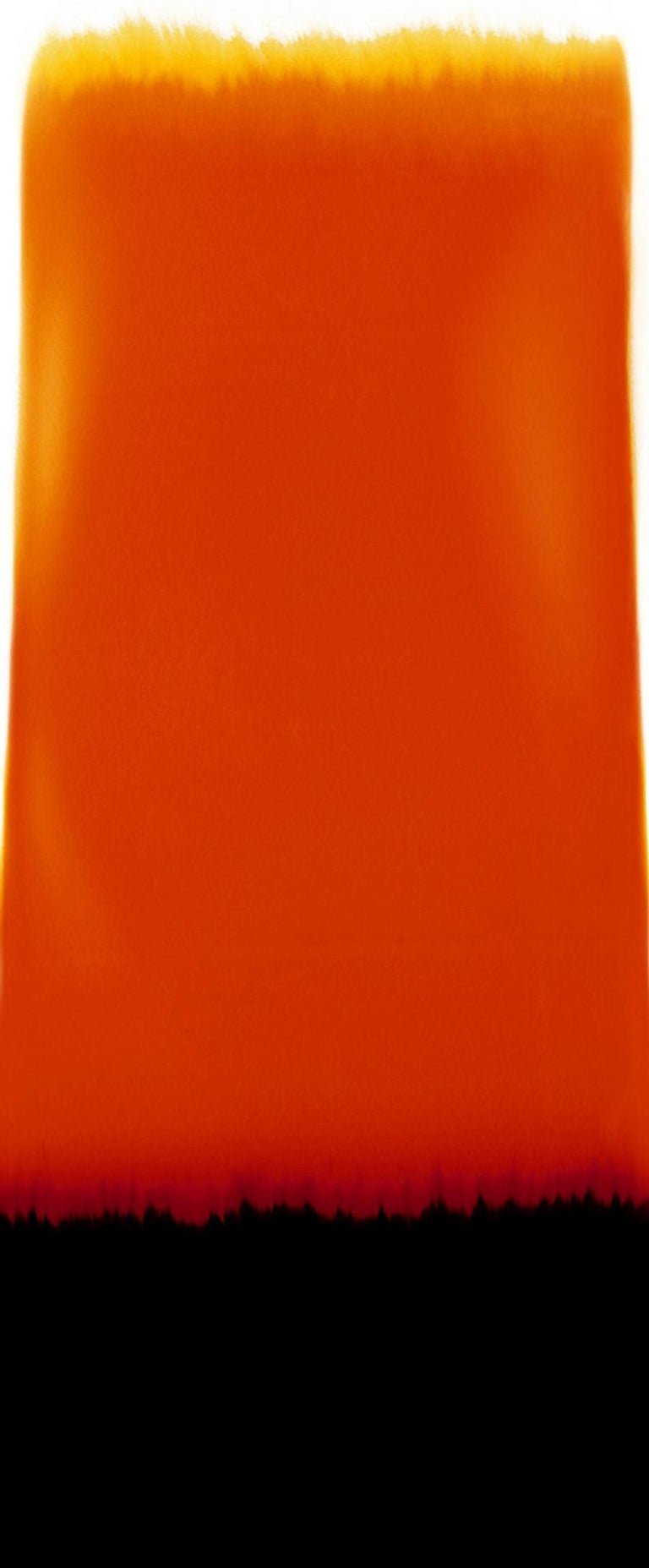Silvio Wolf Color Photograph - Horizon F, abstract photography,  orange and black