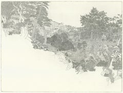 Stormy Landscape, intricate etching of a forest on paper