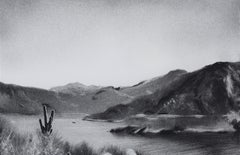 Irrepressible 20, black and white charcoal drawing of desert scene, cactus
