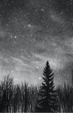 Winter Night in Canmore, black and white charcoal drawing of snowy forest scene
