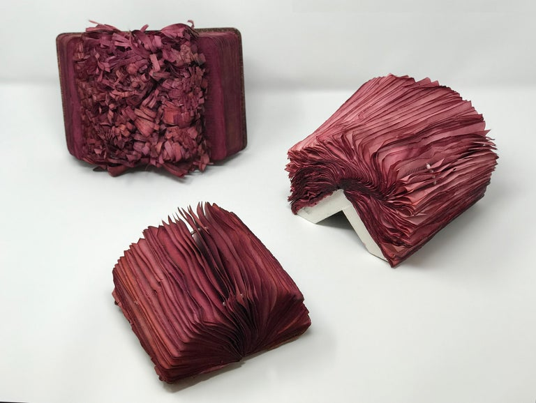 Patricia Miranda, Florilegium Series, 2016, cochineal dyes, antique books, pearl - Brown Abstract Sculpture by Patricia Miranda