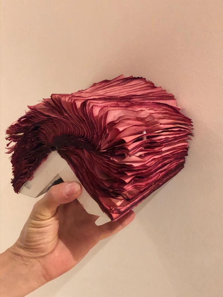Patricia Miranda, Florilegium Series, 2016, cochineal dyes, antique books, pearl For Sale 1